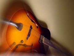 My pride and joy... (skooal) Tags: guitar archtop skooal