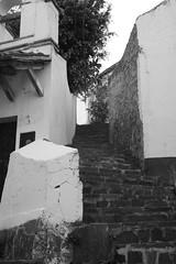 Instrucciones para subir una escalera (T o b y) Tags: canon mexico rebel xt paseo vacaciones taxco guerrero findesemana clubdetoby