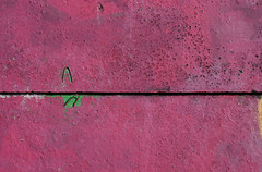 Concrete & Pink (sonofsteppe) Tags: street pink urban inspiration abstract detail art texture wall closeup modern painting underground creativity concrete graffiti design mural paint hungary flat bright vibrant background grunge budapest vivid surface tribal spray explore simplicity backdrop imagination aubergine material abstraction rough visual simple thewall minimalist gettyimages fragment ilmuro bisected partof haphazartpink