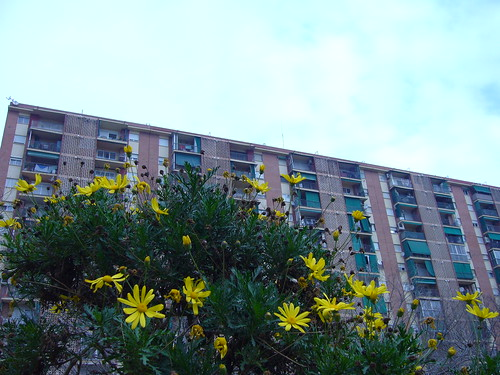 Bloque con flores en Bellvitge