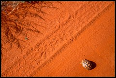 Almost There (China Chas) Tags: africa road shadow orange sand track kenya tortoise scan safari 1994 tyremarks tsavoeast pentaxp30 tsavoeastnationalpark kwangtung