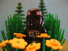 Springtime in Legoland (Jiffy Cat) Tags: flowers lego off stop darth smell them vader minifig now innocents ahhhh tokill