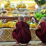 Mönche im Tempel
