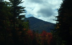 """This is the """"Gap Vista Scenery"""" along the Kanc - IMGP6629 (catchesthelight) Tags: northernnewengland nh nature mountains thekanc misspelled kangamangushighway kangamagushighway mustsee constructed 1959 traveled overamillionpeopleeachyear thekancamagushighway 34mileeastwestchannel 800000acre whitemountainnationalforest lincolnnhtoconwaynh trees change leaves summergreens breathtaking shadesofyellow red fall illuminated colorful dramatic enjoyable leafpeepingroute"""