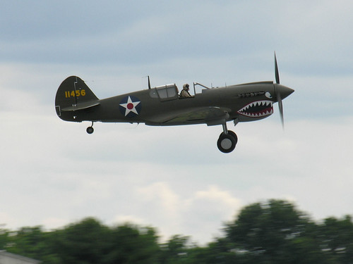 P-40 Warhawk taking off