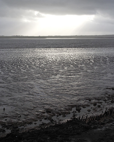 Thorney Bay, Canvey Island
