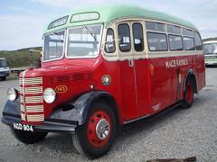 macbrayne bus (wynwhite) Tags: bus macbrayne