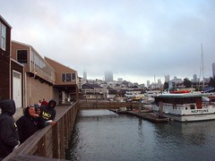 From Pier 39 in San Francisco