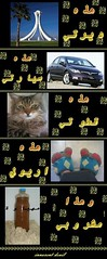 هذه حياتي (Shaima82_4) Tags: life feet home jock car cat