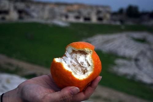 Oranges in Sicily