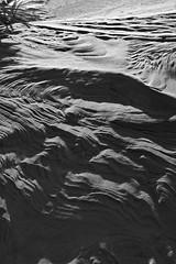 everything spins (Kalense Kid) Tags: africa light blackandwhite bw beach geotagged sand soft kenya dune sensual ripples swell lightshadow whiteandblack lamuisland geotag21812s4054622e