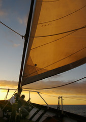 Sunset Sail 1