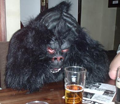 gorilla_despair