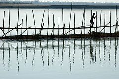 Fisherman at work (Vivek M.) Tags: life india river assam brahmaputra