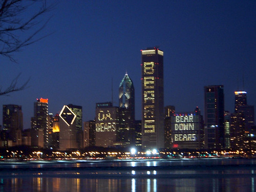 Chicago Skyline in Bear Support