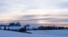 Landscape - February (Krogen) Tags: winter nature norway landscape norge vinter natur norwegen olympus c7070 noruega scandinavia akershus romerike krogen landskap noorwegen noreg ullensaker skandinavia hovin specnature