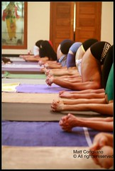 AYI Ashtanga Yoga School (yogasurf) Tags: travel india yoga mysore asana 2007 ashtanga ashtangayoga yogasurf srikpattabhijois mattcorigliano