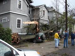 New Orleans Tornado Damage