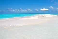 we need you! (muha...) Tags: blue sea white beach umbrella honeymoon alone you tourist romance stunning maldives sandbank weneedyou twtmeblogged muhaphotoscom themeskylines needmodel
