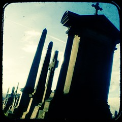 """skyline of the dead... • <a style=""""font-size:0.8em;"""" href=""""http://www.flickr.com/photos/53627666@N00/395698694/"""" target=""""_blank"""">View on Flickr</a>"""