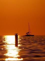 At Sunset (eddy vasquez) Tags: sunset sea sun sol beach mar fishing florida playa arena naples ocaso ocasos souhwest