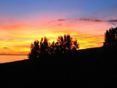 IMG_0004-1 (Chris & Lara Pawluk) Tags: newzealand nz hawkesbay eskdale