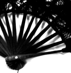 fan (red-head-bed-head) Tags: bw postprocessed shadows lace lacefan