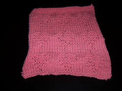Feb Dishcloth