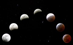 Eclipse in stages 04/03/07 (safari.photogirl) Tags: sky moon night stars march eclipse mosaic astrophotography montage astronomy total lunar lunareclipse totality bloodmoon redmoon totaleclipse project365 hpad hpad040307