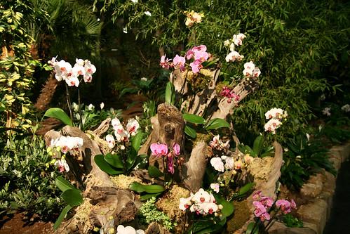 Freizeit, Garten und Touristik Nürnberg 2007