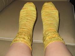 daffodil_socks_1