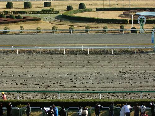 Funabashi racetrack