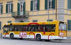 往斜塔的公車