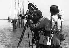 Cinma qubecois : Pour la suite du monde, 1963 (Les Muses de la civilisation)