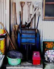 tools (lenny_kox) Tags: blue red green yellow garden can optio shovel tool broom toolbox wateringpot 750z optio750z