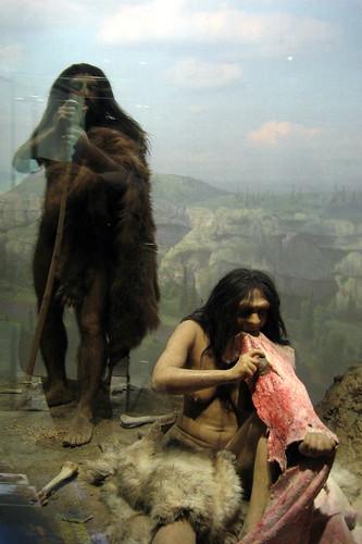 l'homme de cro-magnon a t'il mangé l'homme de néanderthal?