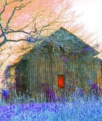 Behind The Red Door (chiral_c/Catherine Stevens) Tags: house rural nc country northcarolina reddoor saturation impressedbeauty roxborolake faceoffwinner photofaceoffwinner pfogold