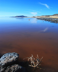 The Great Salt Lake, Utah (Blenford) Tags: sky lake colour water null landscape utah nikon greatsaltlake remote spiraljetty interestingness108 i500 d80 utatafeature