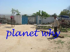 seeding planet why