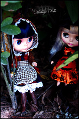 Love Black forest (makiyooo27) Tags: black forest butterfly asian doll ab blythe diva darling hallween ebl rbl