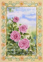 """Pink Roses with a Gold Border"" Watercolor Painting by Elizabeth Ruffing"