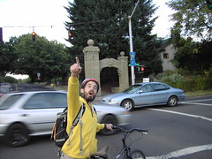 Sander Pointing (fortythreethirtyfive) Tags: birthday scavengerhunt sander yellowteam