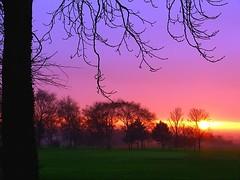 sunset (Mark Watson (kalimistuk)) Tags: trees light sunset sky lumix panasonic fz50