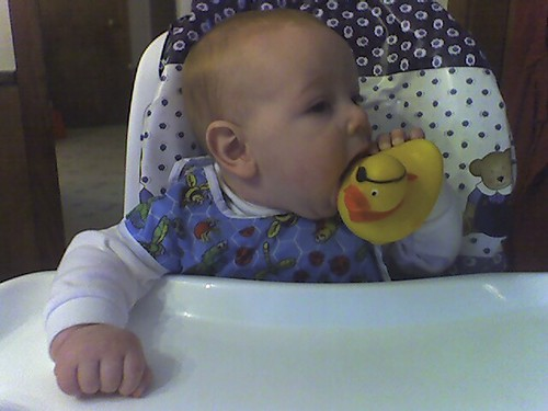 3B's first highchair meal