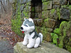 Walking Purchase Park - Plush Husky at the Spring