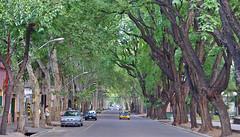 Mendoza Street