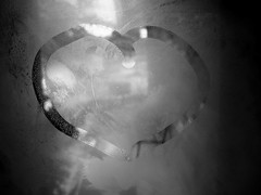 Cold Heart (S h e l l y) Tags: winter bw glass blackwhite heart freezing brr coldheart itscoldoutside winter2007