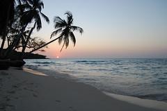 Sunset in Playa Blanca - Baru, Colombia (Freddy104) Tags: ocean blue sunset beach southamerica water sand colombia screensaver salt explore palmtree playablanca baru d40
