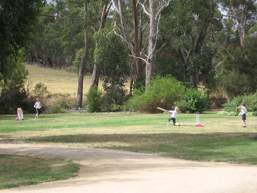 cricket Koonwarra