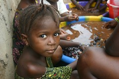 kola nuts (LindsayStark) Tags: africa travel war sierraleone conflict humanrights humanitarian displaced idpcamp refugeecamp idps idp humanitarianaid emergencyrelief idpcamps waraffected